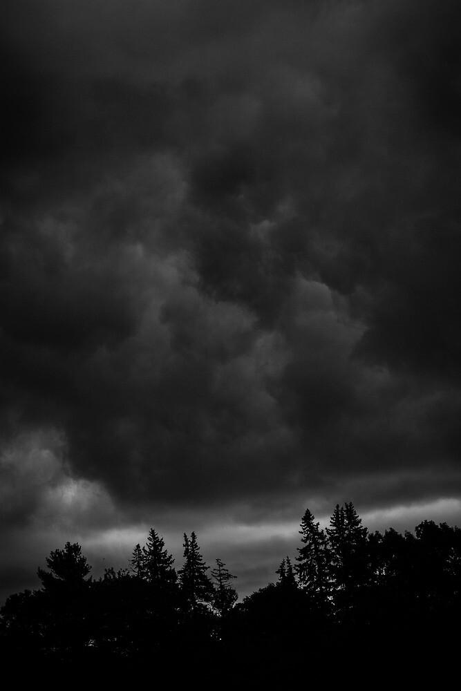 The Storm Is Here by Cassandra DelliCarpini