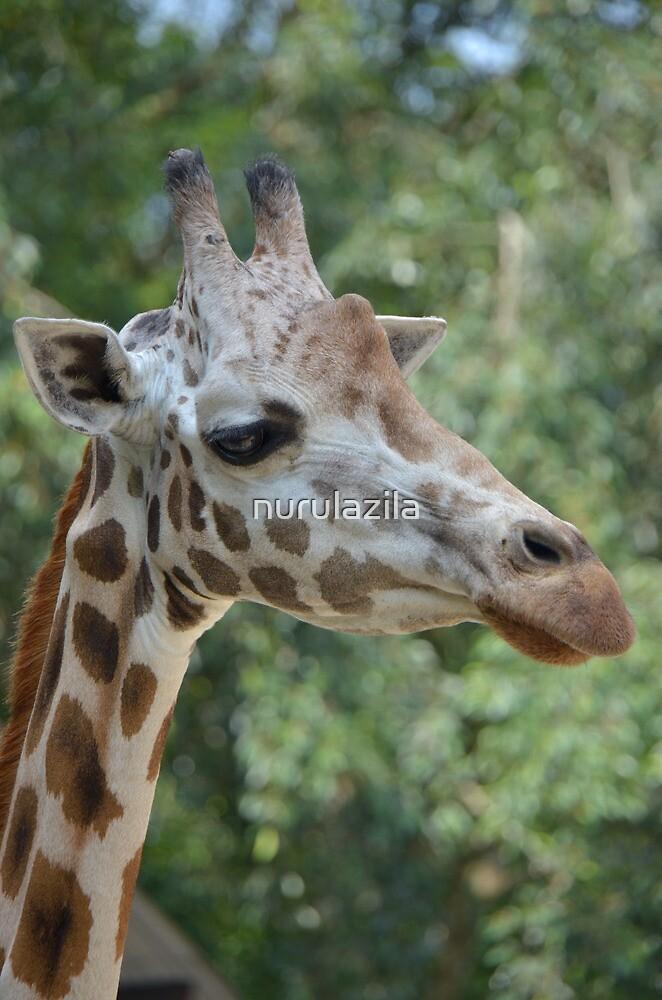 Giraffe by nurulazila