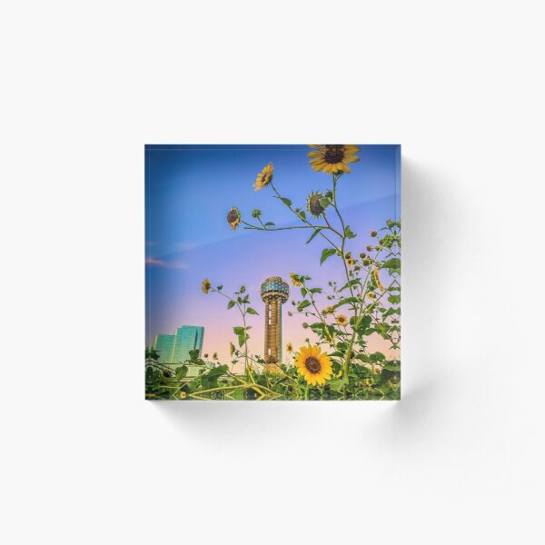 Sunflowers and the Reunion Tower Acrylic Block