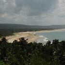 Mozambique Coastline by Nicholas Hart