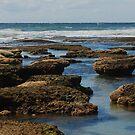 Reefscape by Nicholas Hart