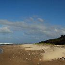 Coastline Panorama by Nicholas Hart