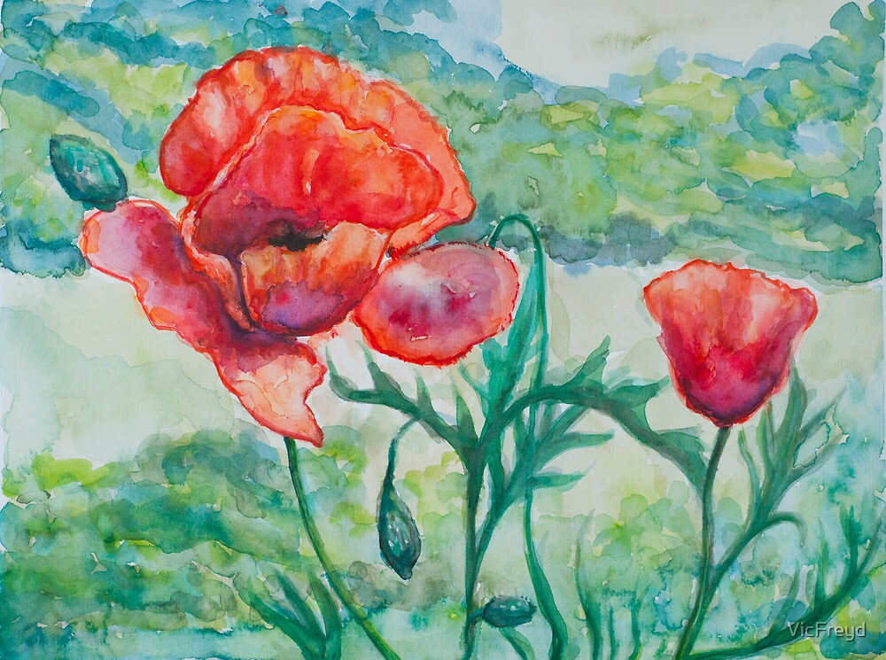 Poppies by VicFreyd