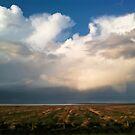 thunderstorm I by Erwin G. Kotzab