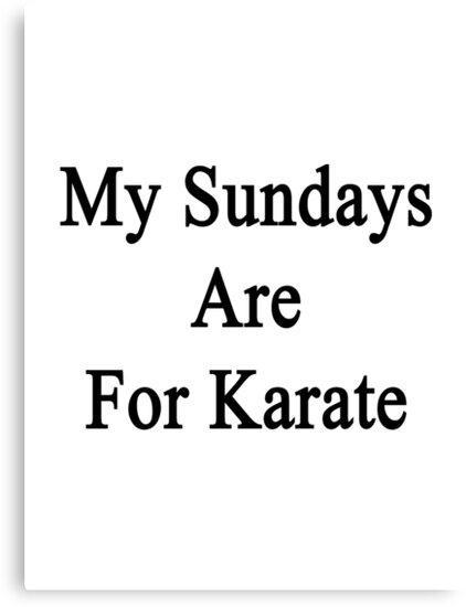My Sundays Are For Karate  by supernova23