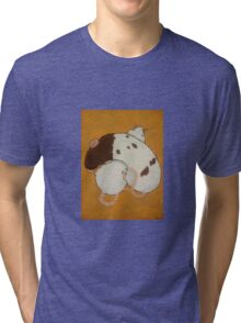 Cuddling Rats Tri-blend T-Shirt