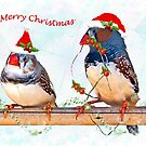 Festive Finches by Krys Bailey