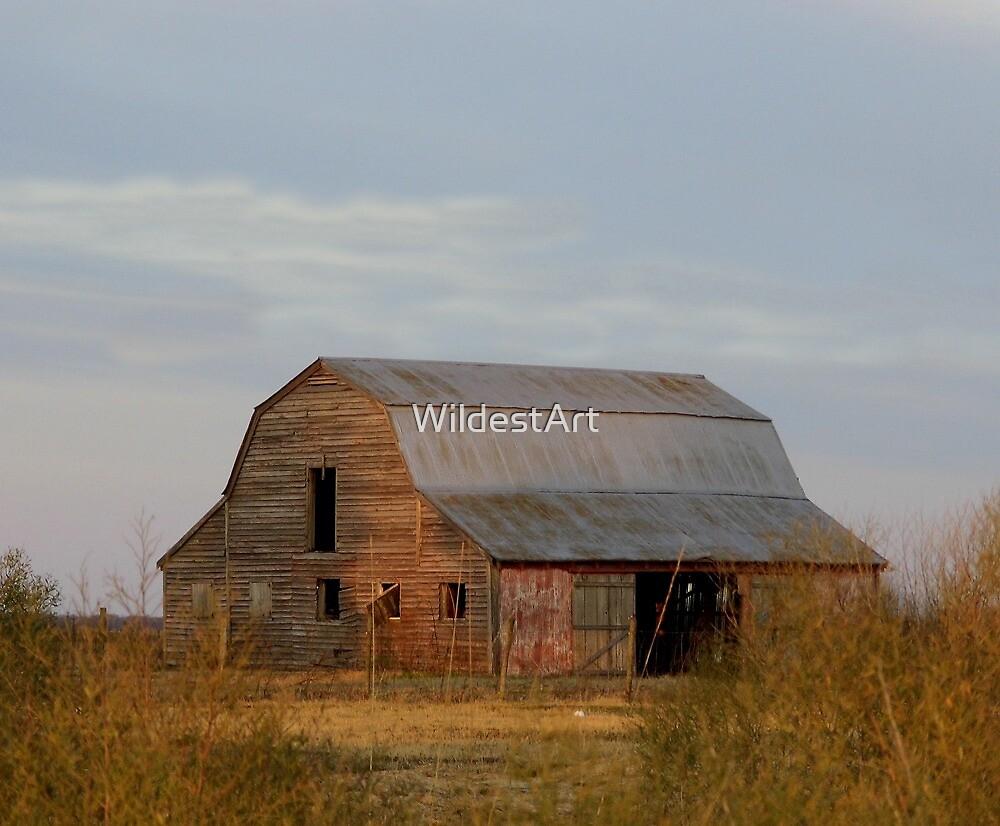 Prairie Barn by WildestArt