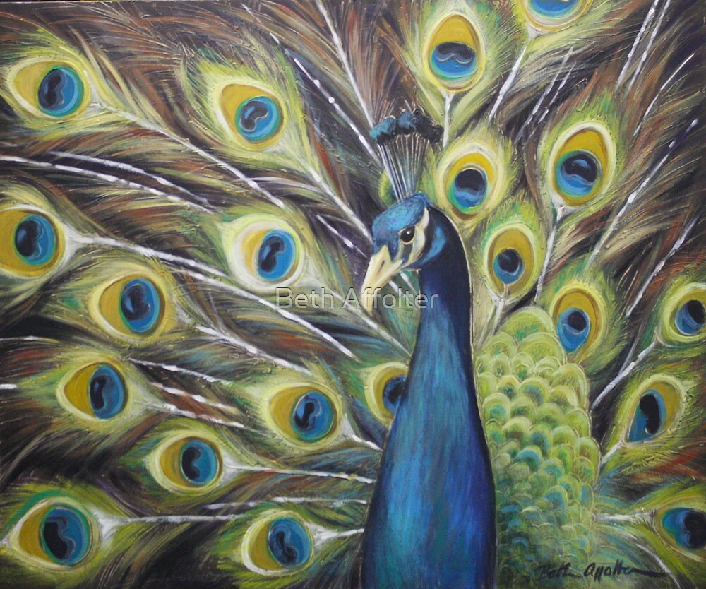 Proud Peacock by Beth Affolter
