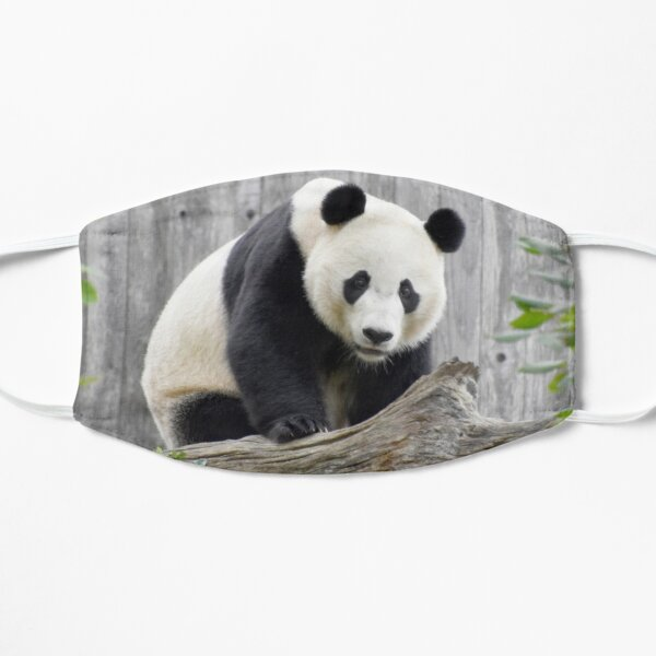 Bei Bei at the National Zoo Flat Mask