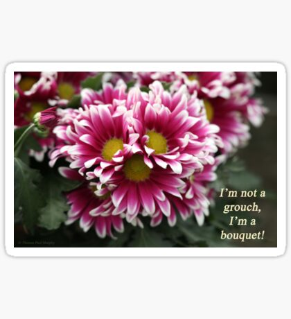 I'm not a grouch, I'm a bouquet. Sticker