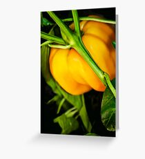 Nature's Edible  Gold Greeting Card