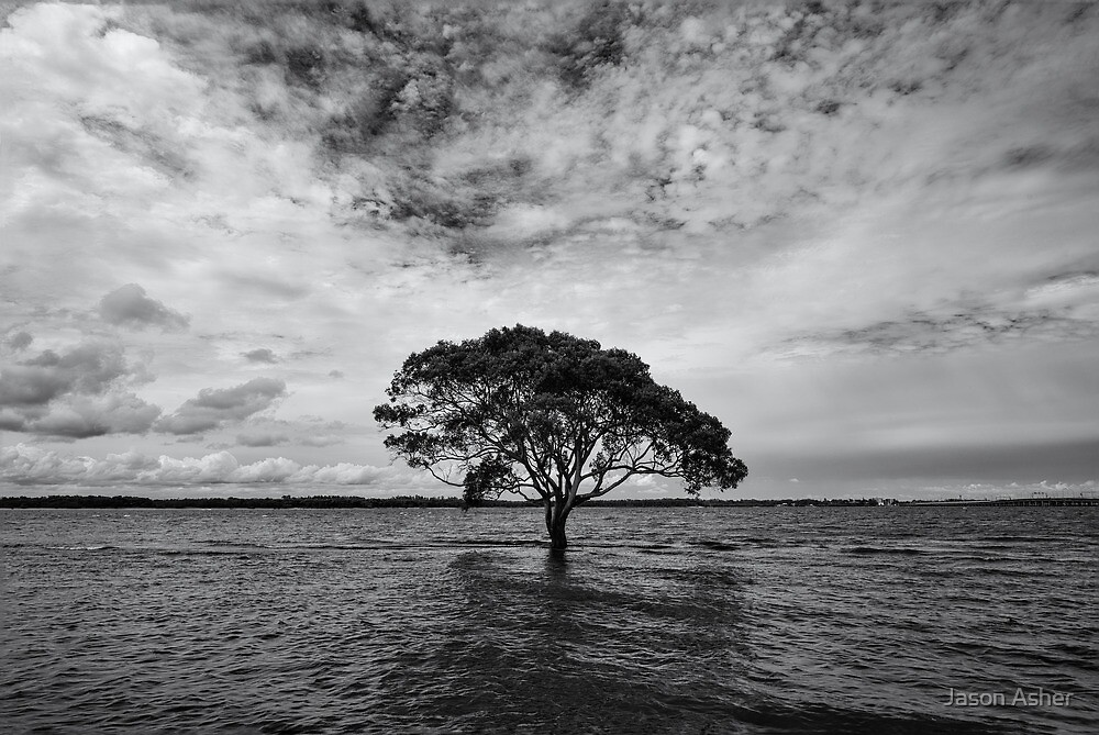 """""""A Lonely Life"""" ∞ Brighton, QLD - Australia by Jason Asher"""