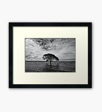 """A Lonely Life"" ∞ Brighton, QLD - Australia Framed Print"