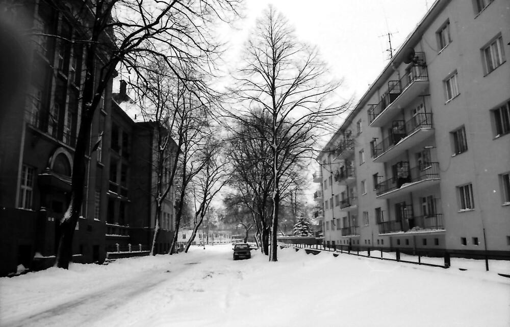 jaroslav kocian : home flats by verivela