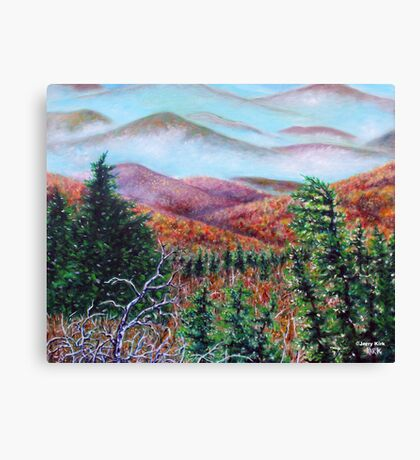'THE VIEW FROM GRANDFATHER MT.'  Canvas Print