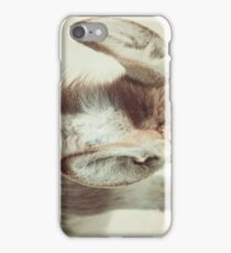 Equine Donkey Ears iPhone Case/Skin