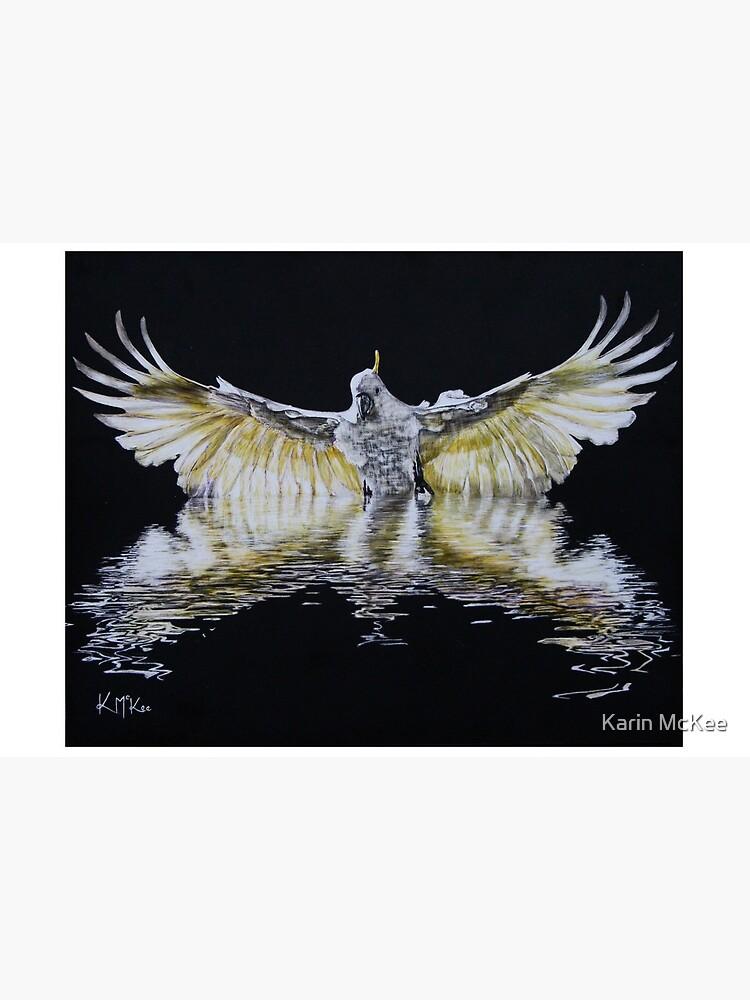 Cockatoo Landing by kjmckee