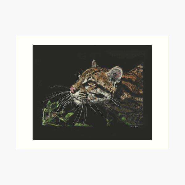 Whiskers In The Sunlight Art Print