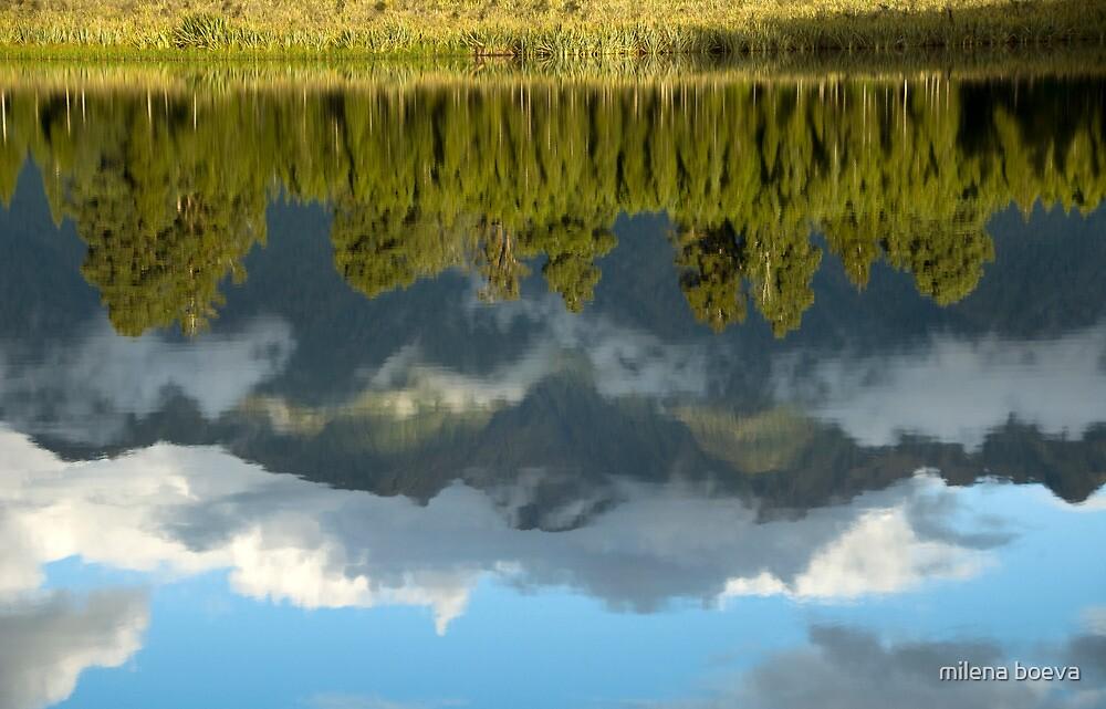 the reflection by milena boeva
