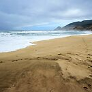 Montara Beach by Ellen Cotton