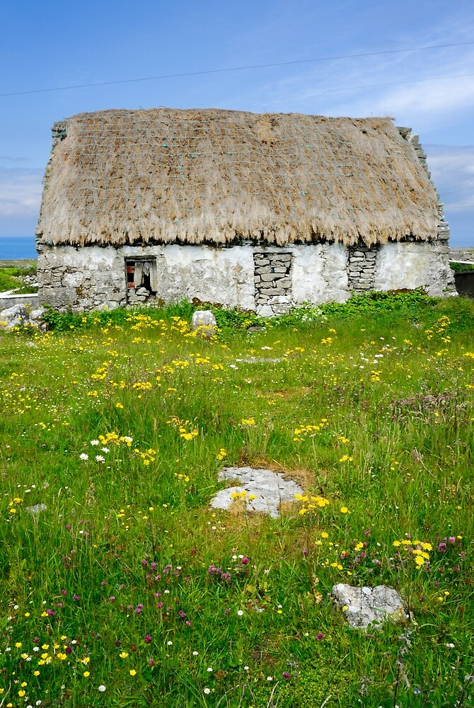 Derelict Cottage, Inishmore by Simon Bowen