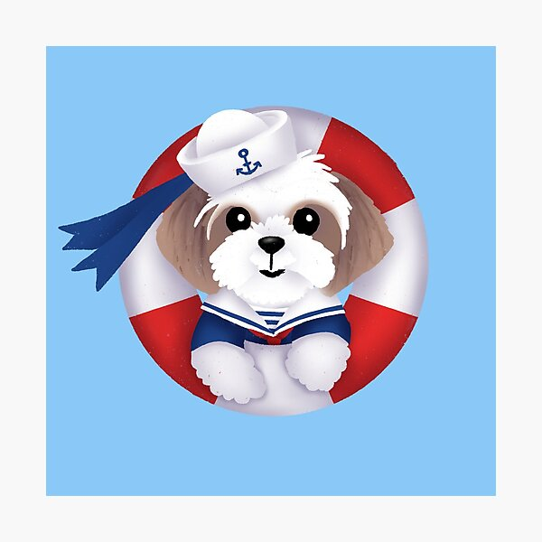 S is for Shih Tzu Sailor Photographic Print