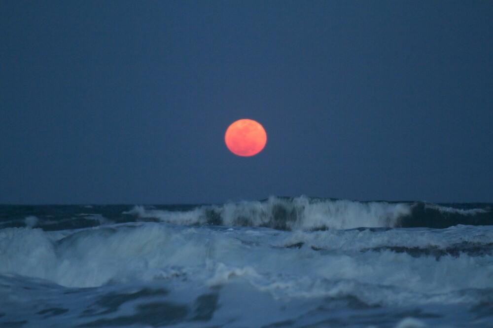 Moon Rising by Robert Taylor