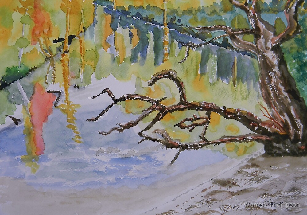 Withlacoochee Impressions by Warren  Thompson