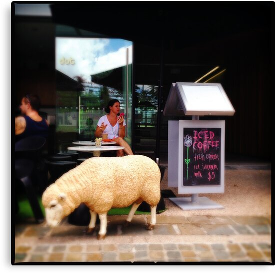 Iced Coffee, Complimentary Sheep by Niki Smallwood