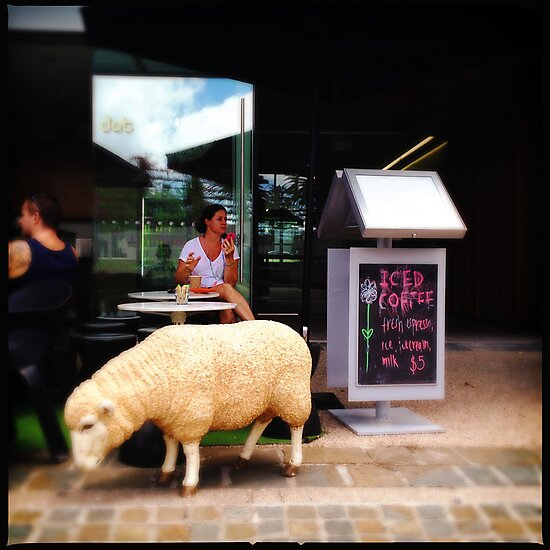 Iced Coffee, Complimentary Sheep by Niki Smallwood