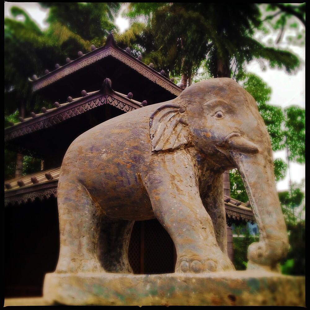 Elefante by Niki Smallwood