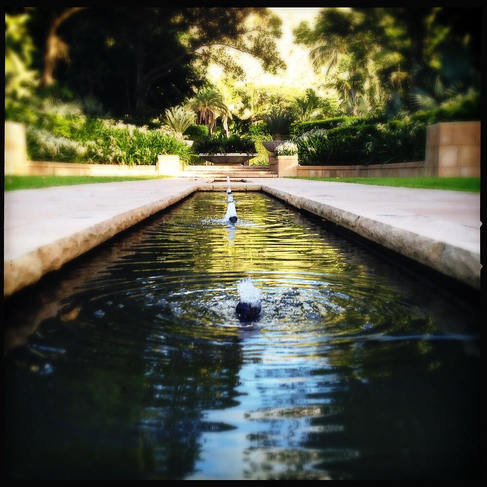 Formal Gardens by Niki Smallwood