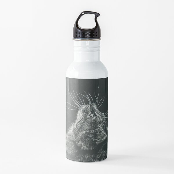 What's That? Water Bottle