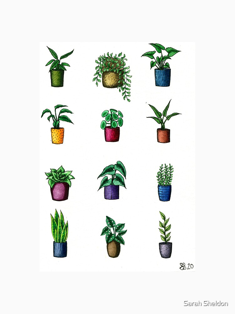 Assorted Mini Potted Plants by avibrantnest
