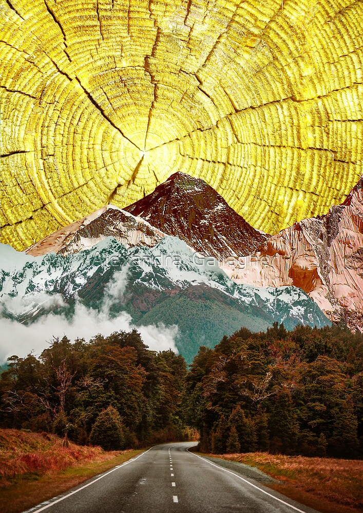 My Sunshine by Alexandra  Gallagher