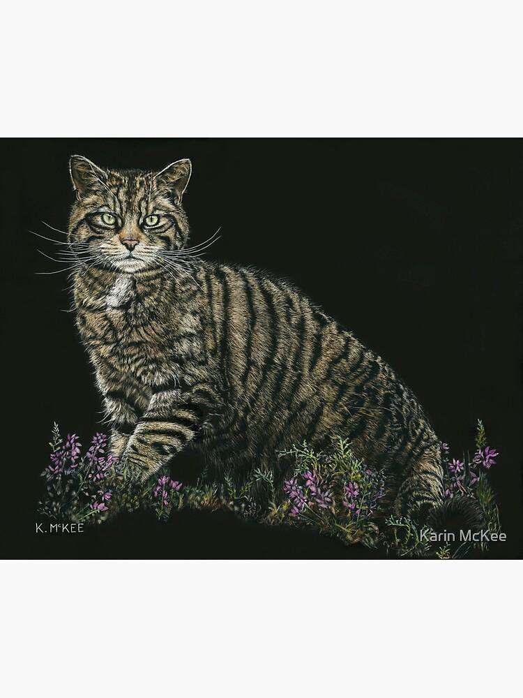 Last of the Highland Tigers by kjmckee
