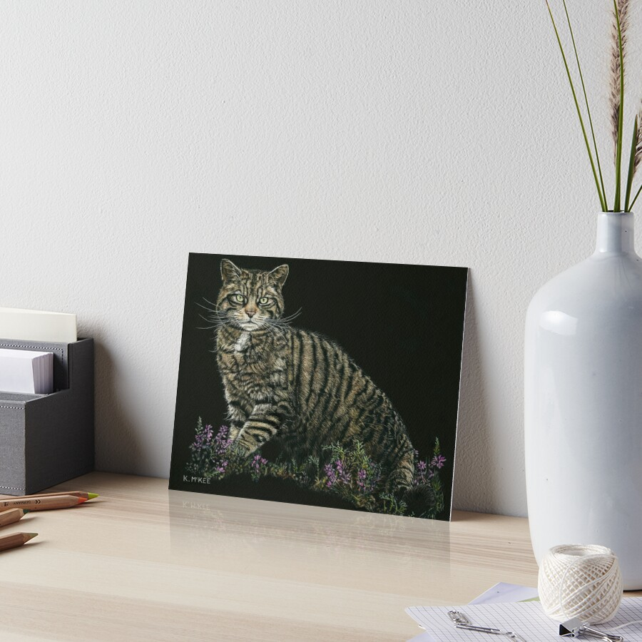Last of the Highland Tigers Art Board Print