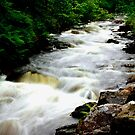 Fast River, Highlands by Sue Fallon Photography