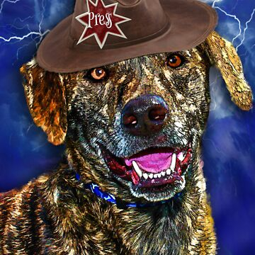 A Canine Community Reporter Fine Art Creation by pictureamoment