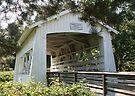 Sandy Creek Covered Bridge by Dave Davis