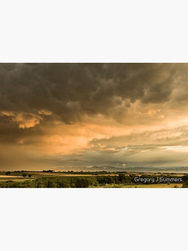 Flight Across The Colorado Plains by nikongreg