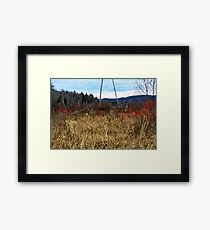 Red Brush Berries Framed Print