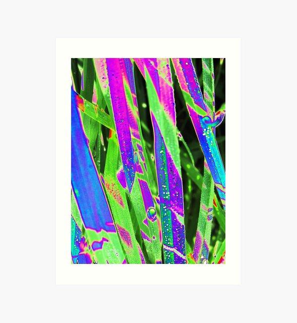"""Natur - Gras - Gräser - Nature - Grass - psychodelic"""" von Marion Waschk"""