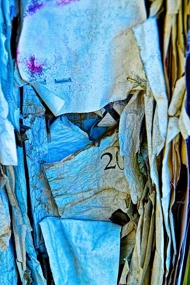 Tattered Paper on a Bulletin Board No. 1045 by Randall Nyhof