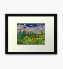 Poppies in a country field Framed Print