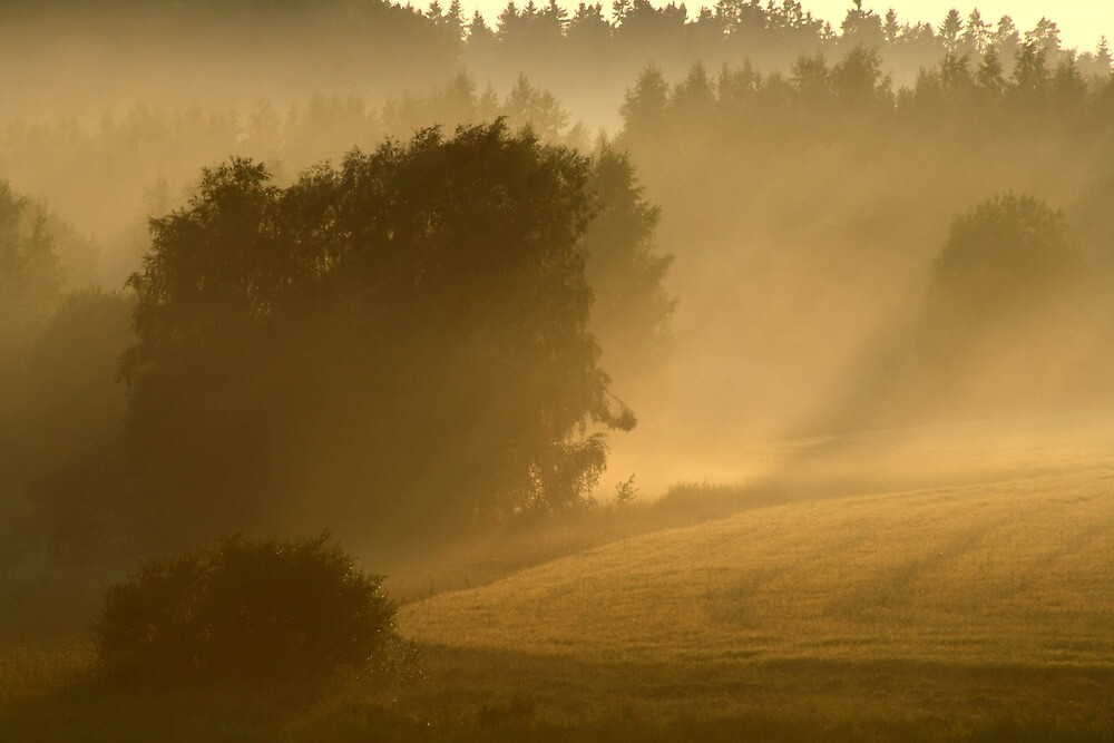 26.7.2013: After Thunderstorm II by Petri Volanen