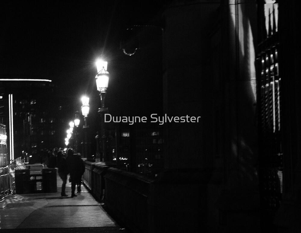 couple on the bridge by Dwayne Sylvester
