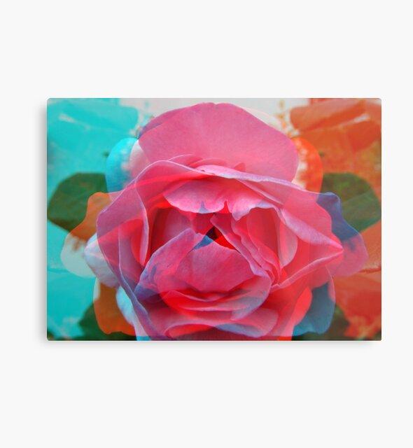 Rose - Rosenblüte - rose blossom pink von Marion Waschk