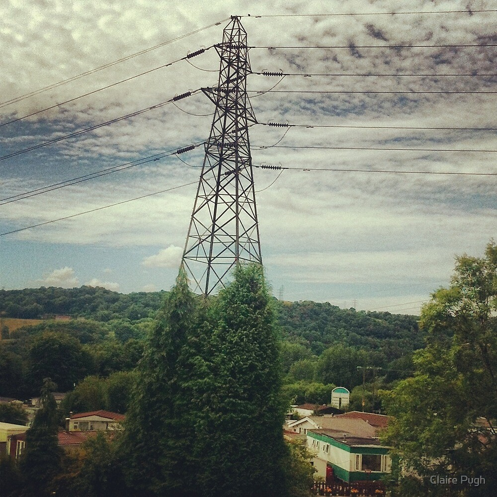 Natural Pylon by Claire Pugh